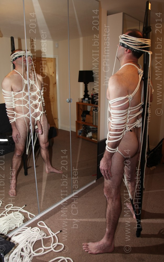 Body Harness 1
