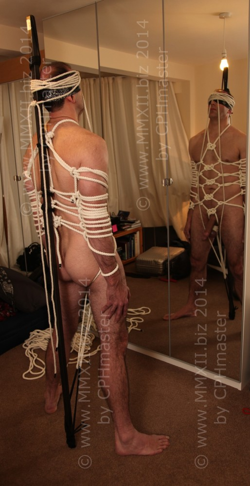 Body Harness 3