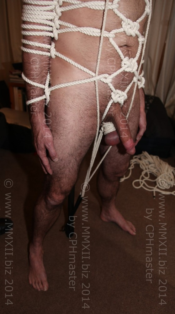 Body Harness - close up