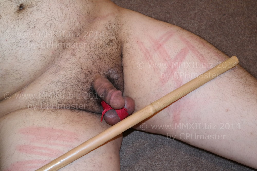 Marked with a bamboo stick 4