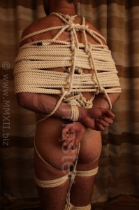 Naked boxtie with cotton ropes
